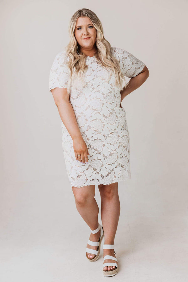 Dresses PLUS Melinda Lace Midi Dress Ivory