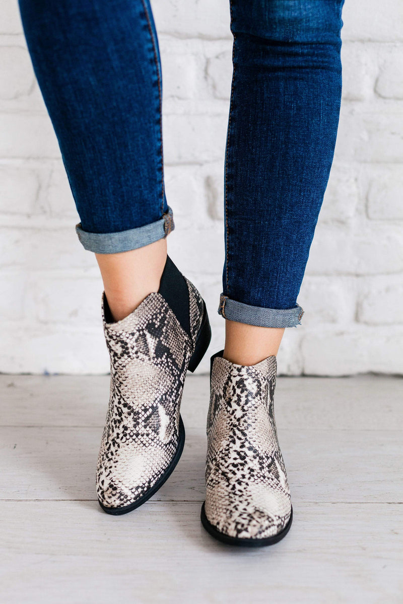 Shoes: Booties Side Stretch Bootie Snake