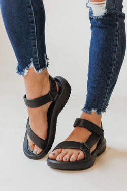Shoes: Sandals Universal Sandals Black