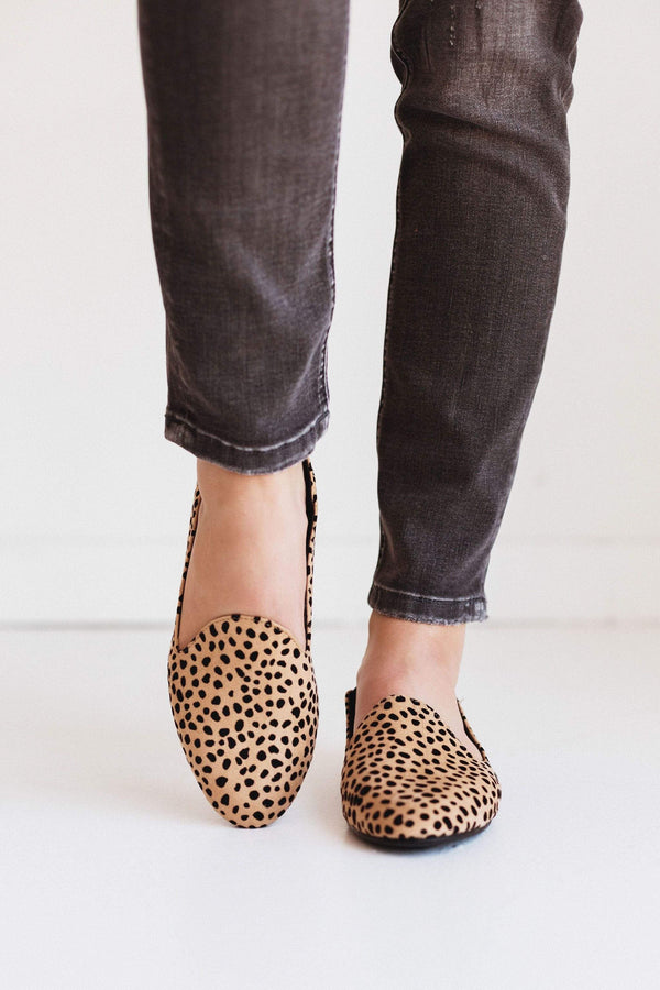 Shoes: Sneakers Madison Flats Cheetah