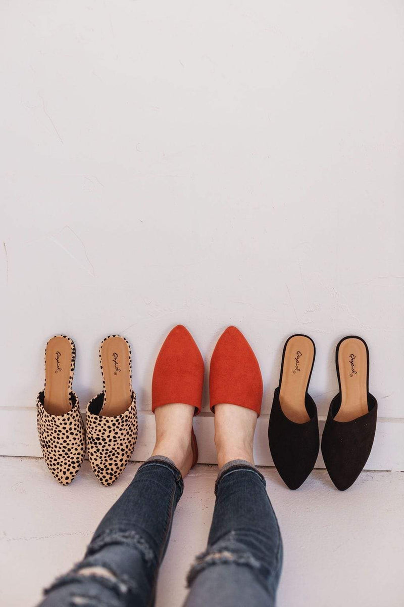 Shoes Zina Pointed Toe Flats Leopard