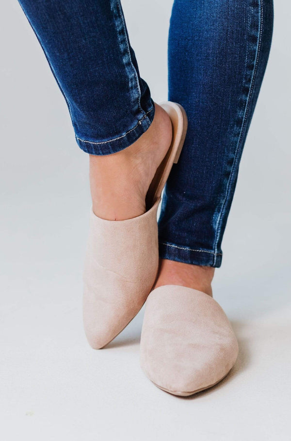 Shoes Zina Pointed Toe Flats Taupe Suede
