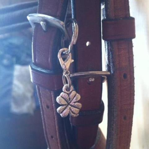 Petite Clover Charm from My Barn Child