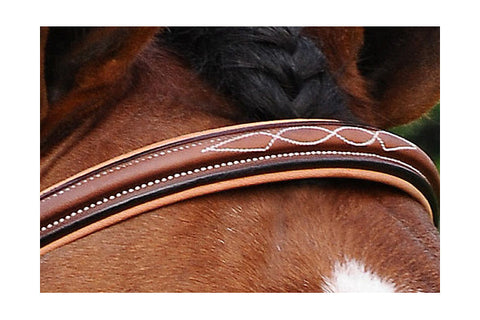 Bridles & Martingales