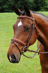 Arc de Triomphe Starman Bridle