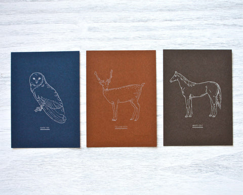 Animal Letterpress Card Set