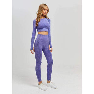MEND VELOCITY Seamless Sleeved Crop - Purple