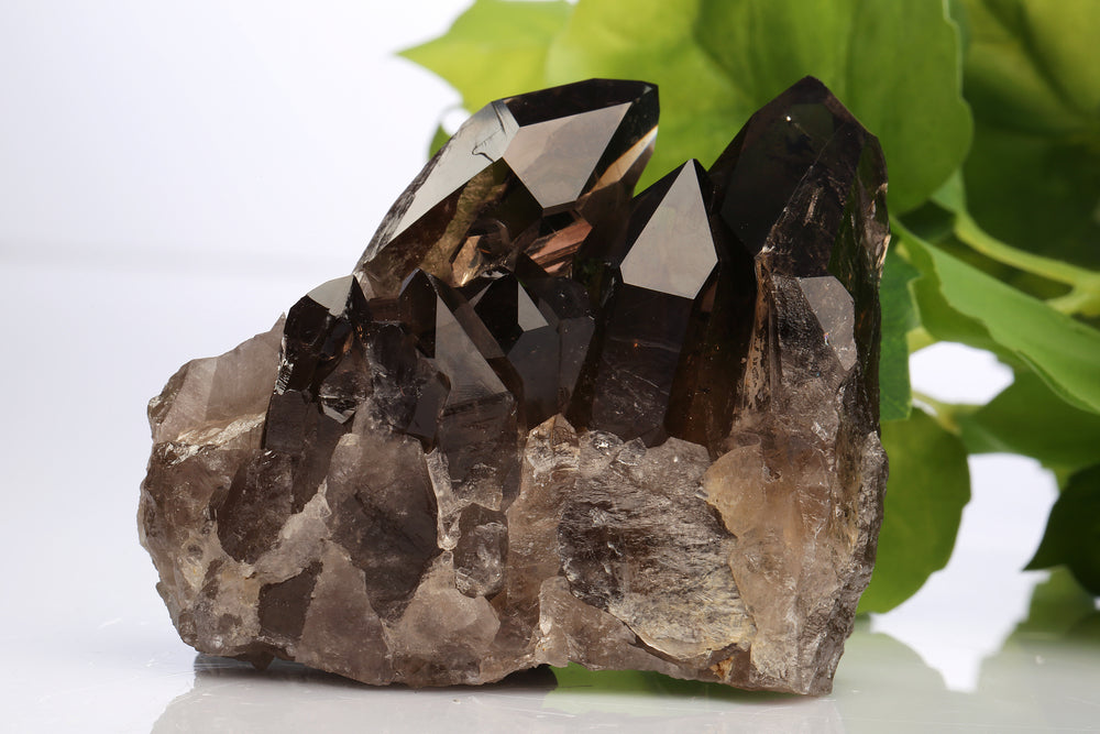 Smoky quartz crystal on a white table with plants in the background.