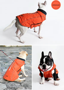 """Cool Weather Canine"" Reflective Dog Coat"