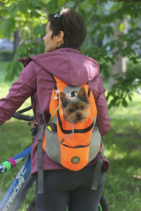 """Dog Around Town"" Canine Backpack"