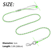 """Climbing Canine"" Rope Dog Lead"