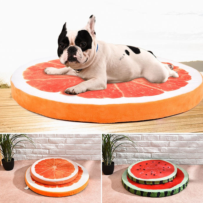 Orange Slice Dog Bed