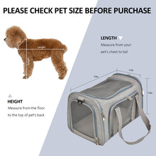 Cloud Flyer Airplane Dog Carrier