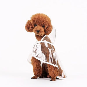 """Looks Like Rain"" Transparent Dog Raincoat"