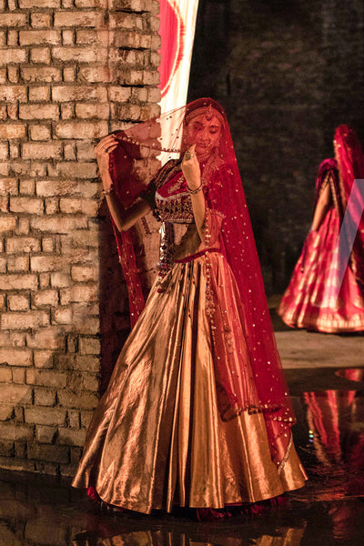 A luminous metallic embroidered lehenga set (LS-16)