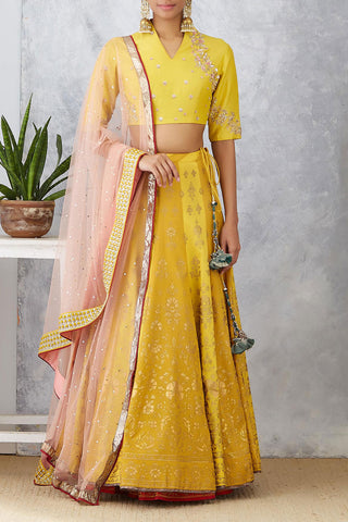 Yellow Embroidered Tussar Silk Lehenga Set ( ANM-02A )