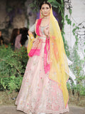 Blush Net Embroidered Lehenga Set (6 pc) SK-16