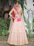 Blush Chanderi Woven Lehenga (5 pc) SK-13