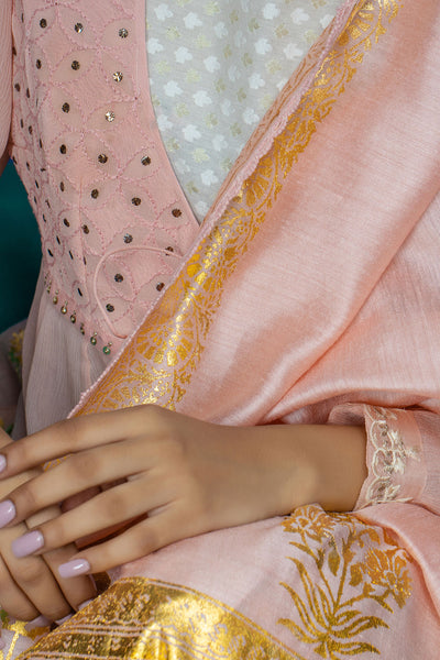Elegant Blush Chikankari Embroidered Anarkali Set ( INY-29 )