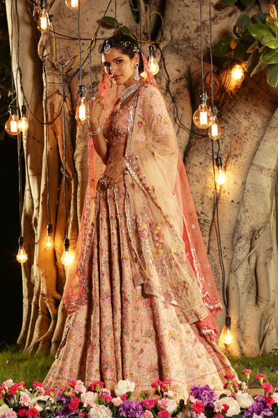 Spectacular Blush Embroidered Lehanga Set (SK-13A)