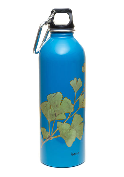 1 liter gingko stainless steel reusable water bottle by. Black Bedroom Furniture Sets. Home Design Ideas