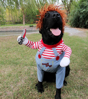 Dog Costume Crazy Doll