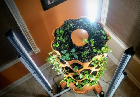 high angle of indoor garden tower with LED lights
