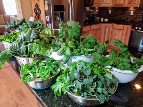 a variety of harvested leaves from a Garden Tower®