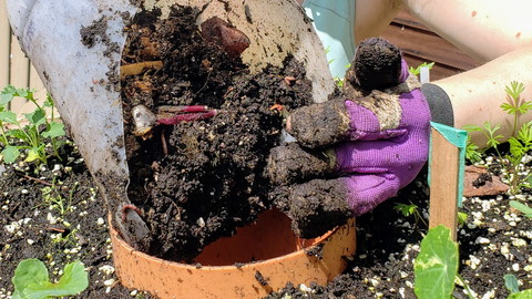 person placing compost into the compost tube of the Garden Tower®