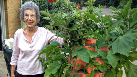 woman with a variety of large vegetables in vertical vegetable garden