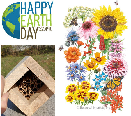 Earth Day Pollinator Kit