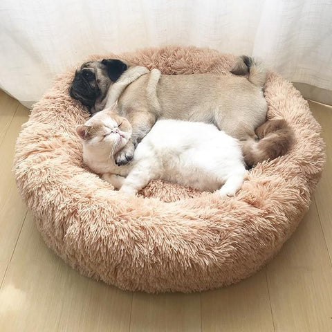 Fluffy Soft and Warm Pet Bed