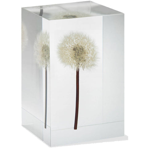Dandelion Objet D'Art MoMA Exclusive - the cozzee project