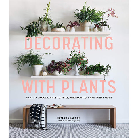 Decorating with Plants - the cozzee project