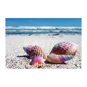 Rainbow Seashells Needlework Diamond Painting Kit - DIY