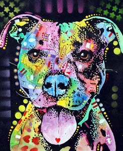 Pitbull Colorful Diamond Painting Kit - DIY