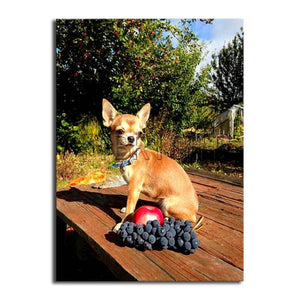 Dog Apple And Grape Diamond Painting Kit - DIY
