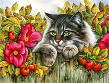 Load image into Gallery viewer, 5d Cat Diamond Painting Kit Premium-13