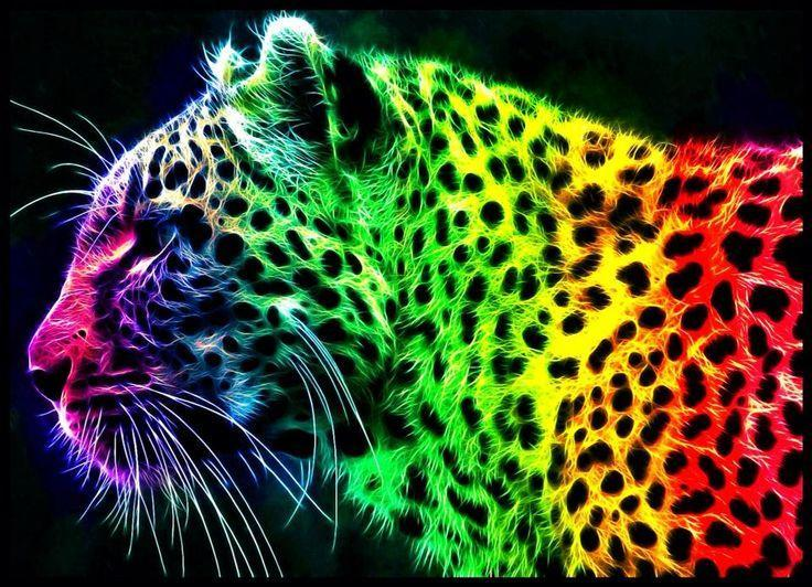 Jaguar Colors Diamond Painting Kit - DIY