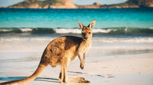 Load image into Gallery viewer, Kangaroo Island Diamond Painting Kit - DIY