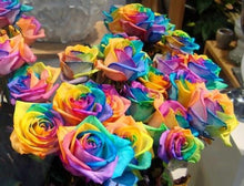 Load image into Gallery viewer, Rainbow Flowers Diamond Painting Kit - DIY Rainbow Flowers-17