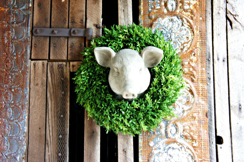 Estate Pig Head Wall Mount