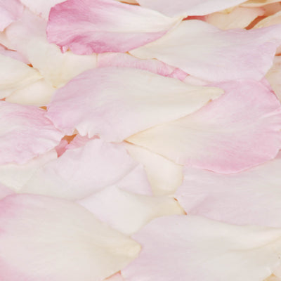 Pink and White Rose Petal Confetti