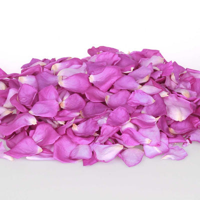 Purple Dried Rose Petals