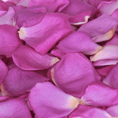 Purple Freeze Dried Rose Petals