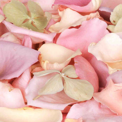 Green Hydrangea Petals and Pastel Freeze Dried Rose Petals