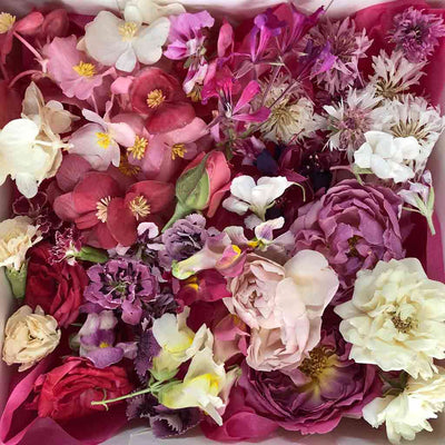 Mixed Pink Freeze Dried Edible Flowers