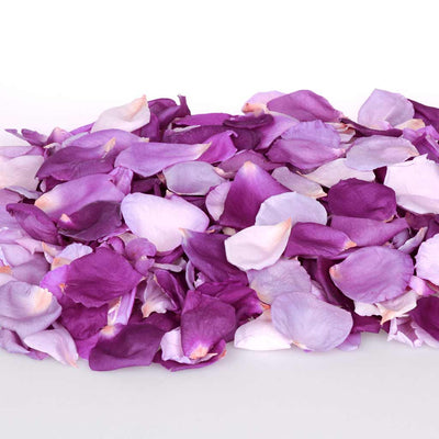 Dark purple, light purple, mauve and lilac rose petals
