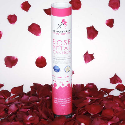 Burgundy Red Freeze Dried Rose Petal Cannon