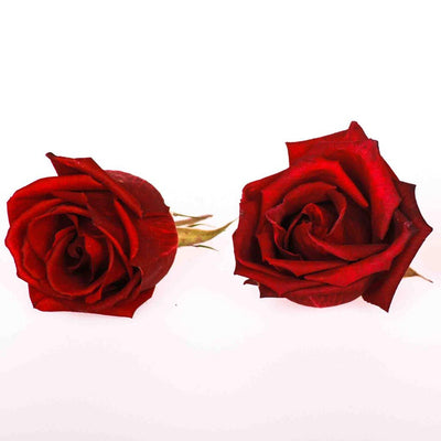Rich Red Freeze Dried Edible Mini Roses